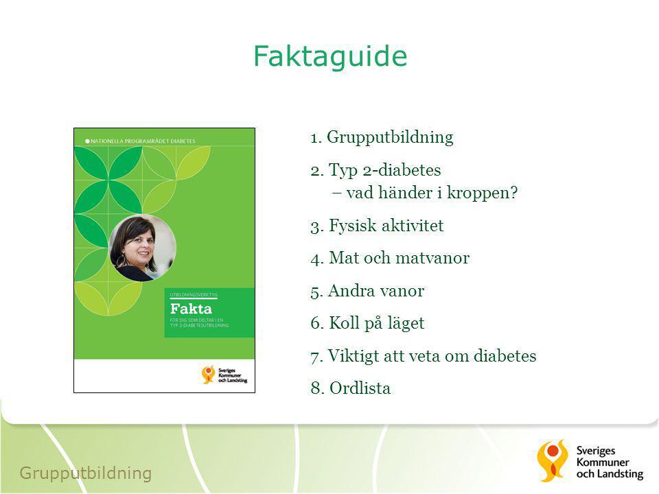 Faktaguide 1. Grupputbildning 2. Typ 2-diabetes – vad händer i kroppen? 3. Fysisk aktivitet 4. Mat och matvanor 5. Andra vanor 6. Koll på läget 7. Vik