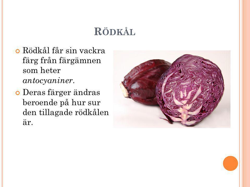 O LIKA FÄRG OM DET ÄR SURT ELLER BASISKT Man brukar tillaga rödkål tillsammans med vinäger, citron eller sura äpplen för att färgen ska bevaras.