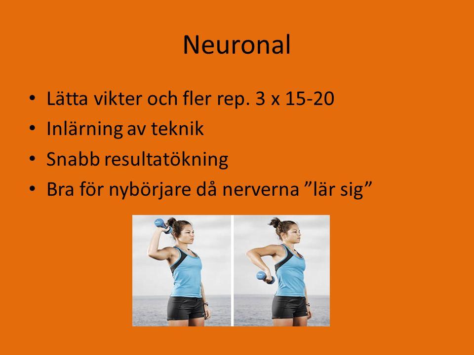 Neuronal Lätta vikter och fler rep.