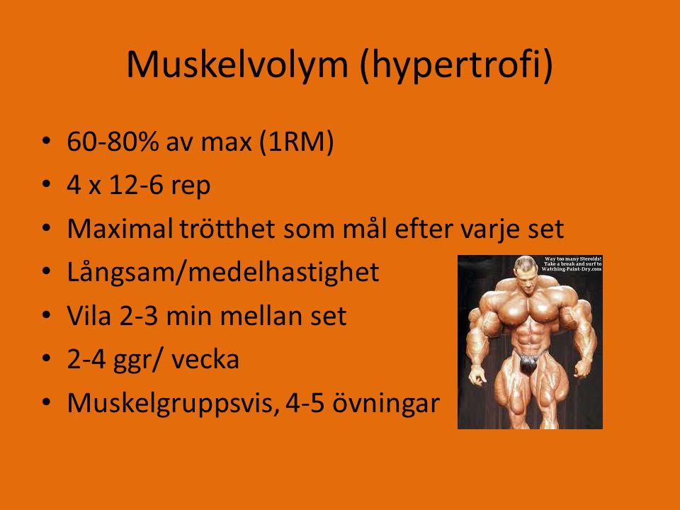 Muskelvolym (hypertrofi) 60-80% av max (1RM) 4 x 12-6 rep Maximal trötthet som mål efter varje set Långsam/medelhastighet Vila 2-3 min mellan set 2-4 ggr/ vecka Muskelgruppsvis, 4-5 övningar