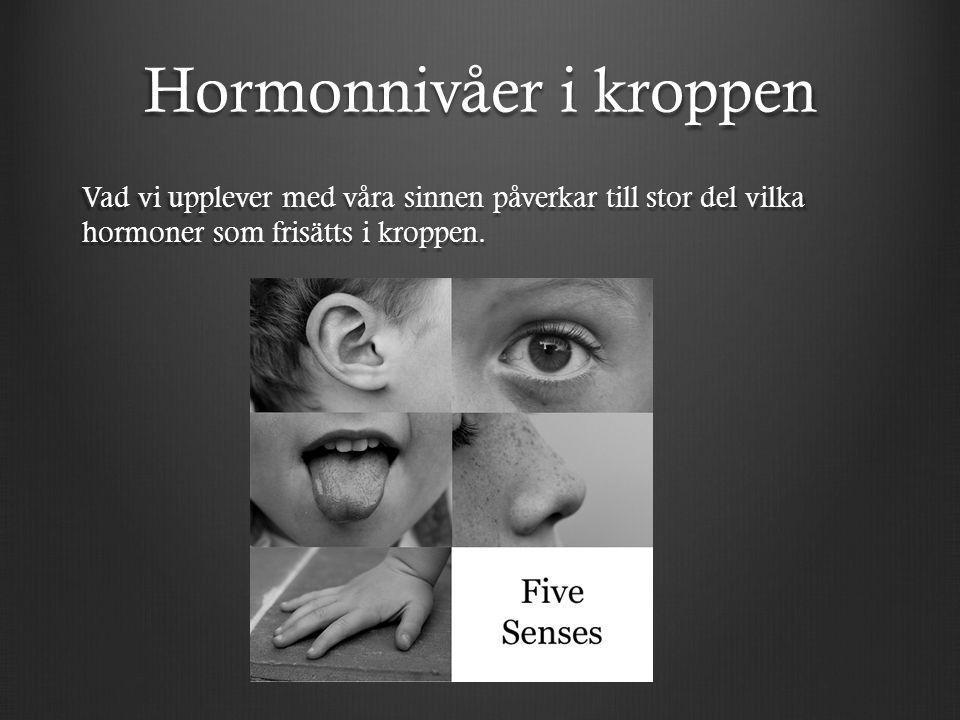Hormonnivåer i kroppen Vad vi upplever med våra sinnen påverkar till stor del vilka hormoner som frisätts i kroppen.
