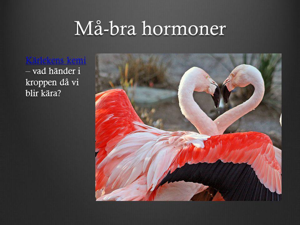 Må-bra hormoner Kärlekens kemi Kärlekens kemi – vad händer i kroppen då vi blir kära? Kärlekens kemi