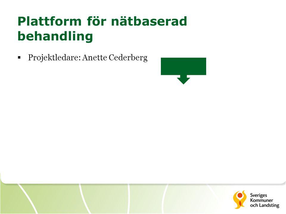 Plattform för nätbaserad behandling  Projektledare: Anette Cederberg