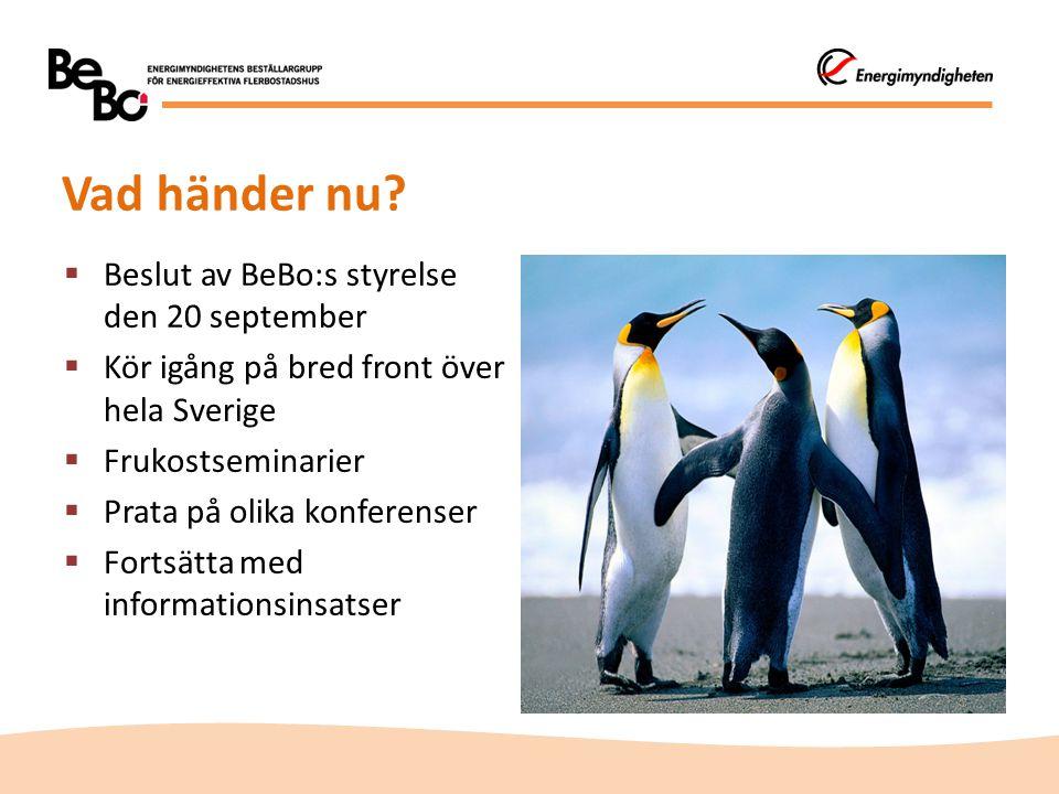  Beslut av BeBo:s styrelse den 20 september  Kör igång på bred front över hela Sverige  Frukostseminarier  Prata på olika konferenser  Fortsätta med informationsinsatser Vad händer nu