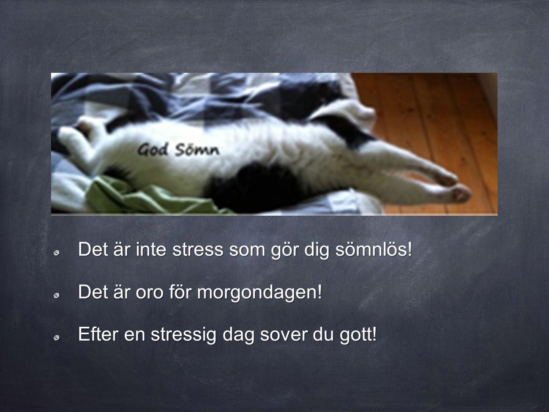 Det är inte stress som gör dig sömnlös! Det är oro för morgondagen! Efter en stressig dag sover du gott!