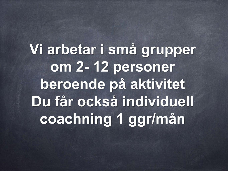 Vi arbetar i små grupper om 2- 12 personer beroende på aktivitet Du får också individuell coachning 1 ggr/mån