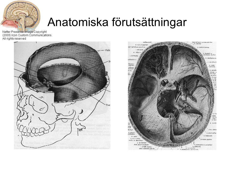 Anatomiska förutsättningar Netter Presenter Image Copyright (2005) Icon Custom Communications.