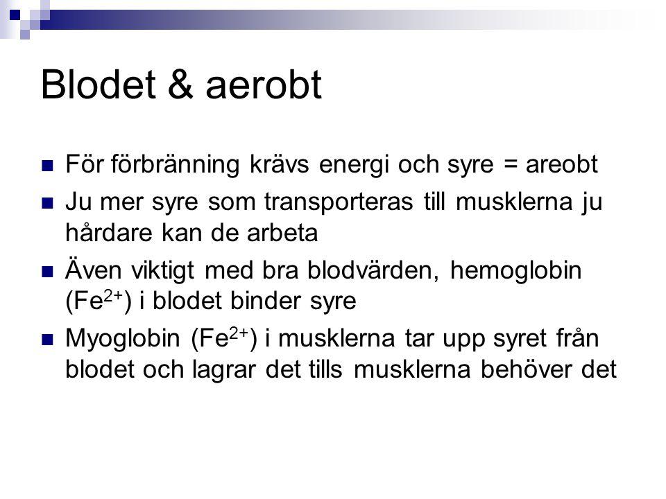 Blodet & aerobt För förbränning krävs energi och syre = areobt Ju mer syre som transporteras till musklerna ju hårdare kan de arbeta Även viktigt med