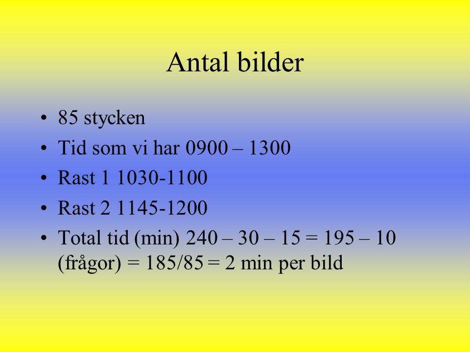 Antal bilder 85 stycken Tid som vi har 0900 – 1300 Rast 1 1030-1100 Rast 2 1145-1200 Total tid (min) 240 – 30 – 15 = 195 – 10 (frågor) = 185/85 = 2 mi