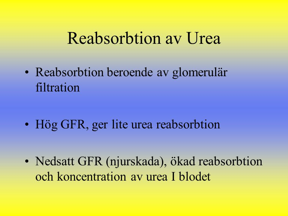 Reabsorbtion av Urea Reabsorbtion beroende av glomerulär filtration Hög GFR, ger lite urea reabsorbtion Nedsatt GFR (njurskada), ökad reabsorbtion och