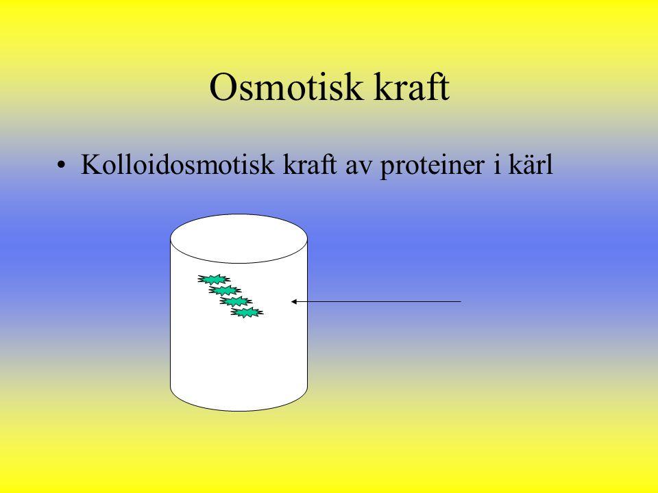 Osmotisk kraft Kolloidosmotisk kraft av proteiner i kärl