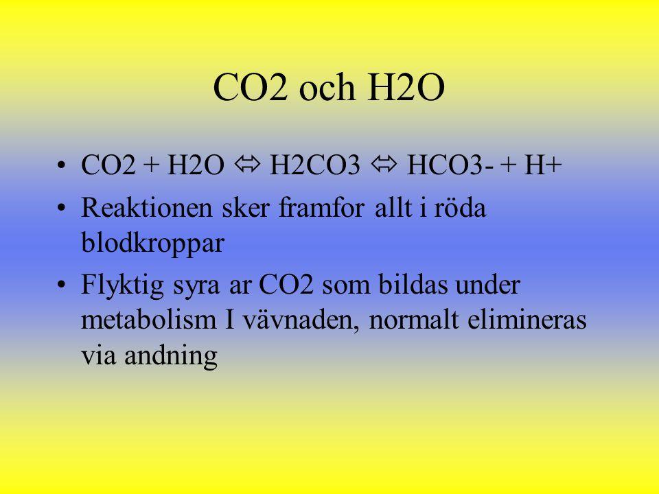 CO2 och H2O CO2 + H2O  H2CO3  HCO3- + H+ Reaktionen sker framfor allt i röda blodkroppar Flyktig syra ar CO2 som bildas under metabolism I vävnaden,