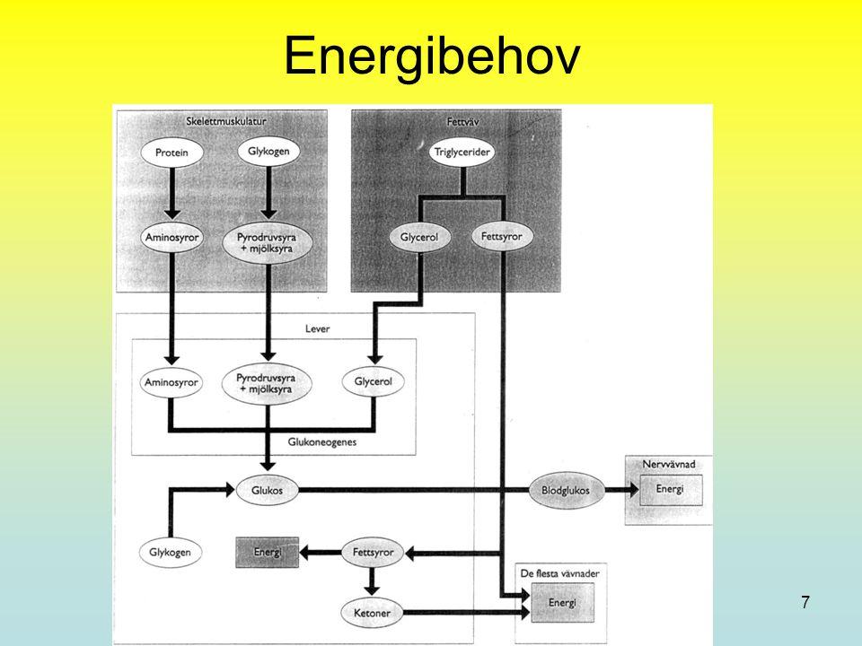 Acasia AB (2007) Joakim Carleson, med Dr 8 Upptag av Kolhydrat Mindre sackarider (mono och di) lätta att ta upp Större (stärkelse och cellulosa) svårare att ta upp Cellulosa kallas även fibrer