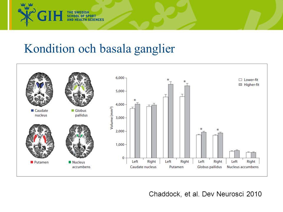 Kondition och basala ganglier Chaddock, et al. Dev Neurosci 2010