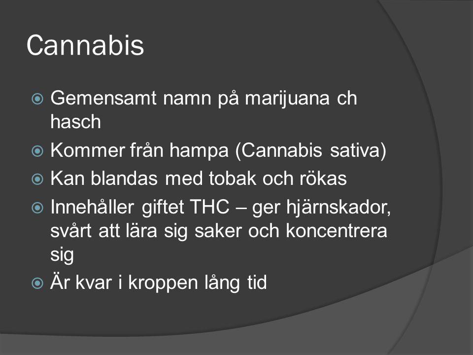 Cannabis  Gemensamt namn på marijuana ch hasch  Kommer från hampa (Cannabis sativa)  Kan blandas med tobak och rökas  Innehåller giftet THC – ger