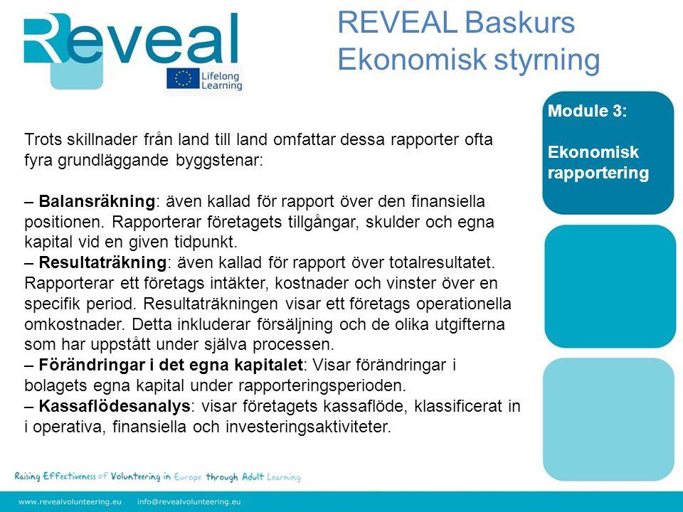 Module 3: Ekonomisk rapportering Trots skillnader från land till land omfattar dessa rapporter ofta fyra grundläggande byggstenar: – Balansräkning: även kallad för rapport över den finansiella positionen.