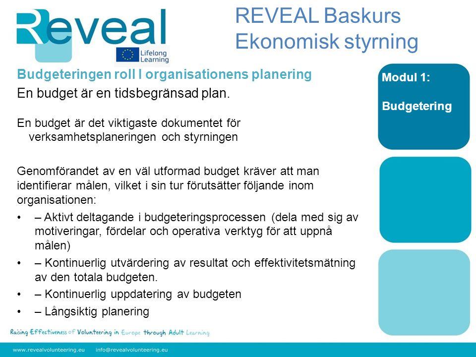 Modul 1: Budgetering Här nedan kan vi se de viktigaste stegen i den ekonomiska processen för planering och styrning: REVEAL Baskurs Ekonomisk styrning