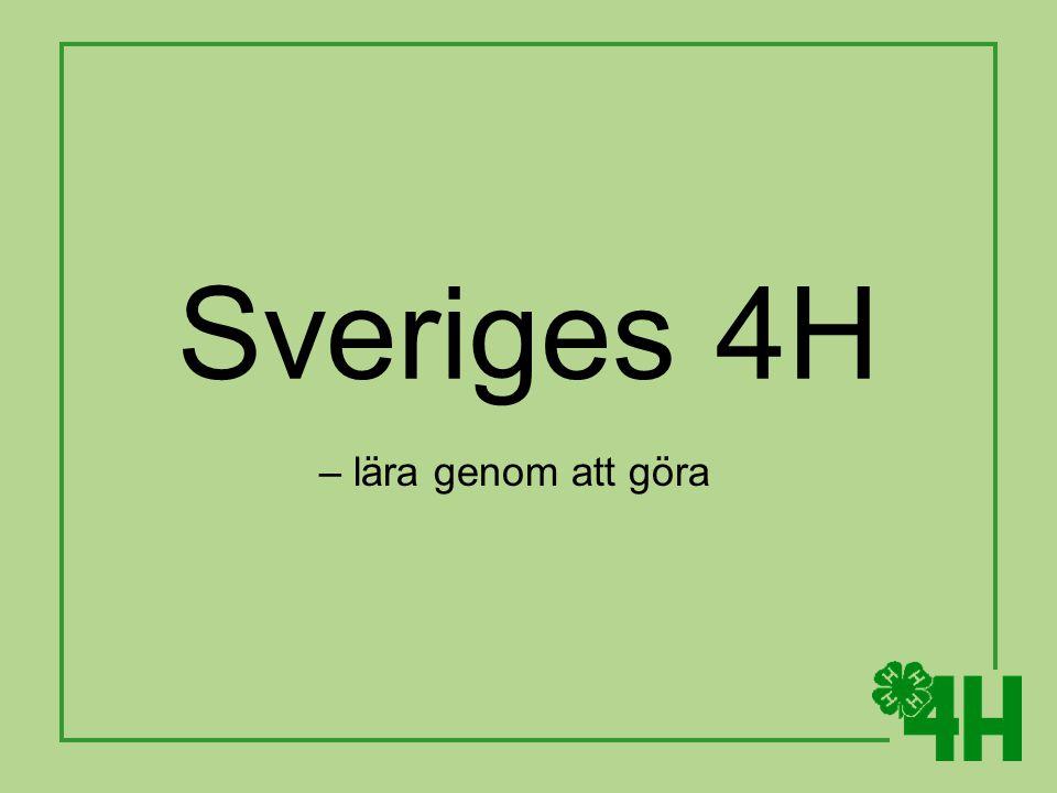 Sveriges 4H – lära genom att göra