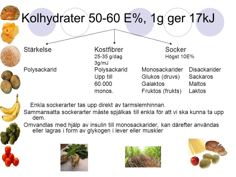 Kolhydrater 50-60 E%, 1g ger 17kJ StärkelseKostfibrerSocker 25-35 g/dagHögst 10E% 3g/mJ Polysackarid Polysackarid MonosackariderDisackarider Upp till