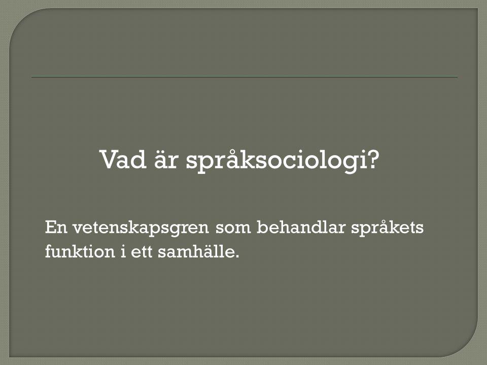 Vad är språksociologi? En vetenskapsgren som behandlar språkets funktion i ett samhälle.