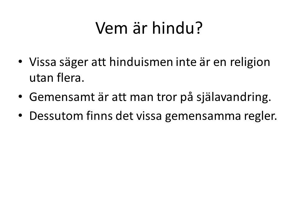 Vem är hindu? Vissa säger att hinduismen inte är en religion utan flera. Gemensamt är att man tror på själavandring. Dessutom finns det vissa gemensam
