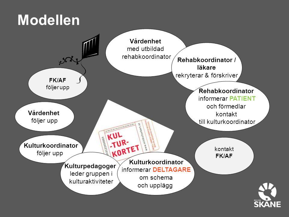 Kulturupplevelser i grupp, 3 gånger per vecka i 10 veckor Helsingborgs stadsbibliotek Sofiero slott Konserthuset, Helsingborg Fredriksdals museum och trädgårdar Dunkers kulturhus