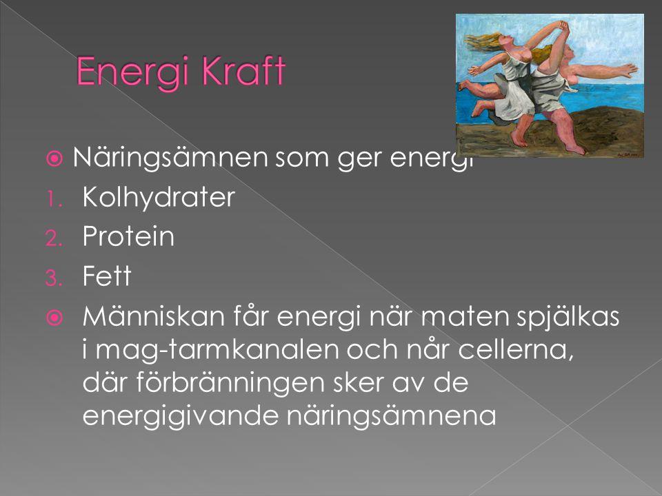  Näringsämnen som ger energi 1. Kolhydrater 2. Protein 3. Fett  Människan får energi när maten spjälkas i mag-tarmkanalen och når cellerna, där förb