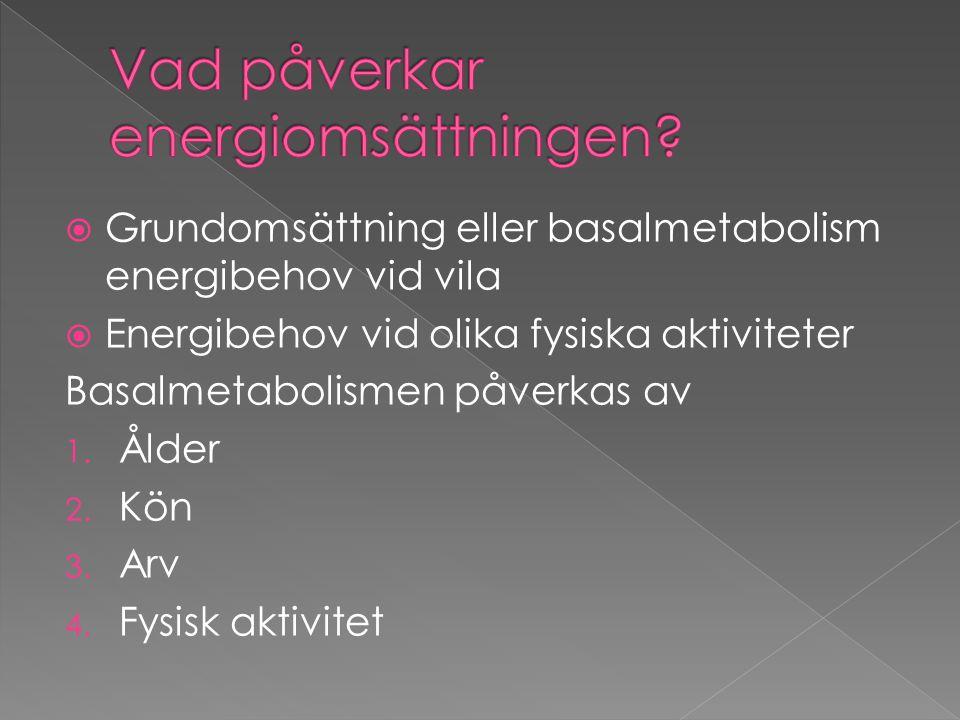  Grundomsättning eller basalmetabolism energibehov vid vila  Energibehov vid olika fysiska aktiviteter Basalmetabolismen påverkas av 1. Ålder 2. Kön