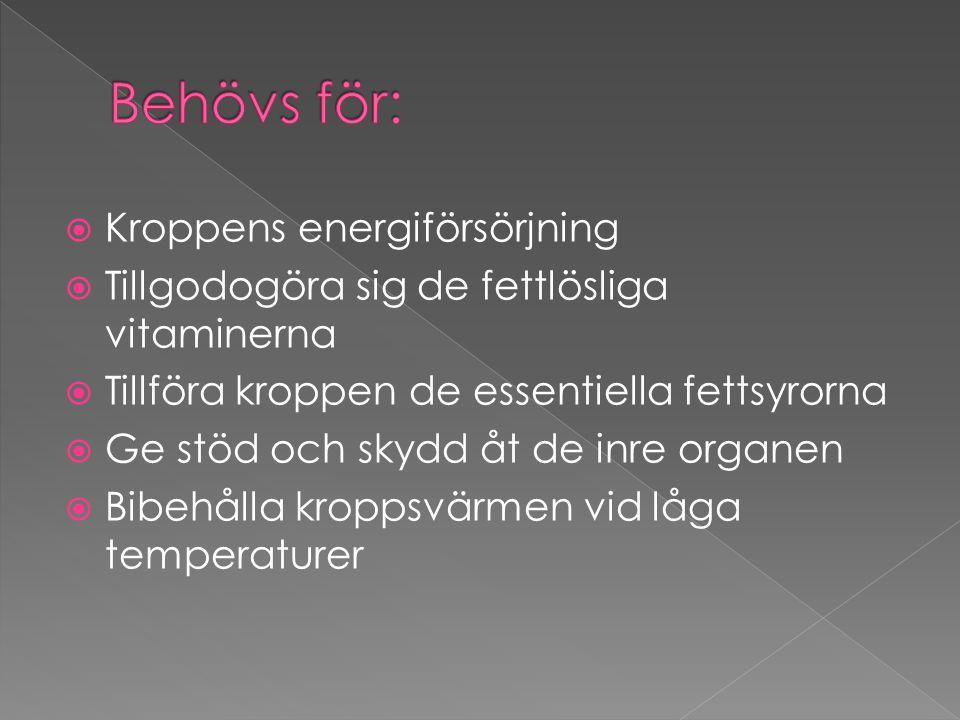  Kroppens energiförsörjning  Tillgodogöra sig de fettlösliga vitaminerna  Tillföra kroppen de essentiella fettsyrorna  Ge stöd och skydd åt de inr