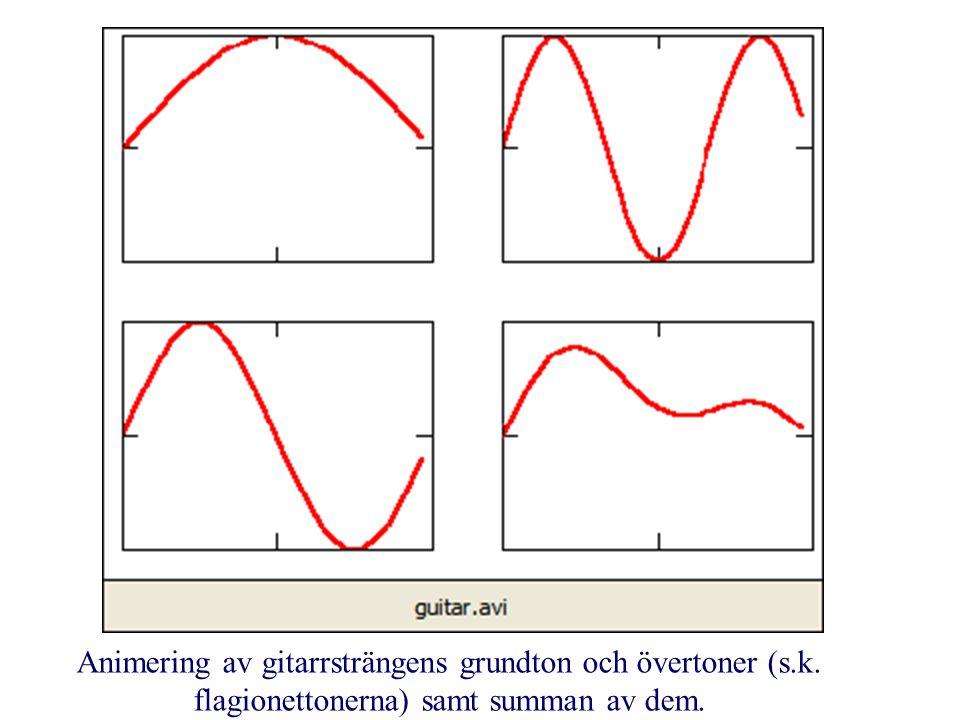 Animering av gitarrsträngens grundton och övertoner (s.k. flagionettonerna) samt summan av dem.