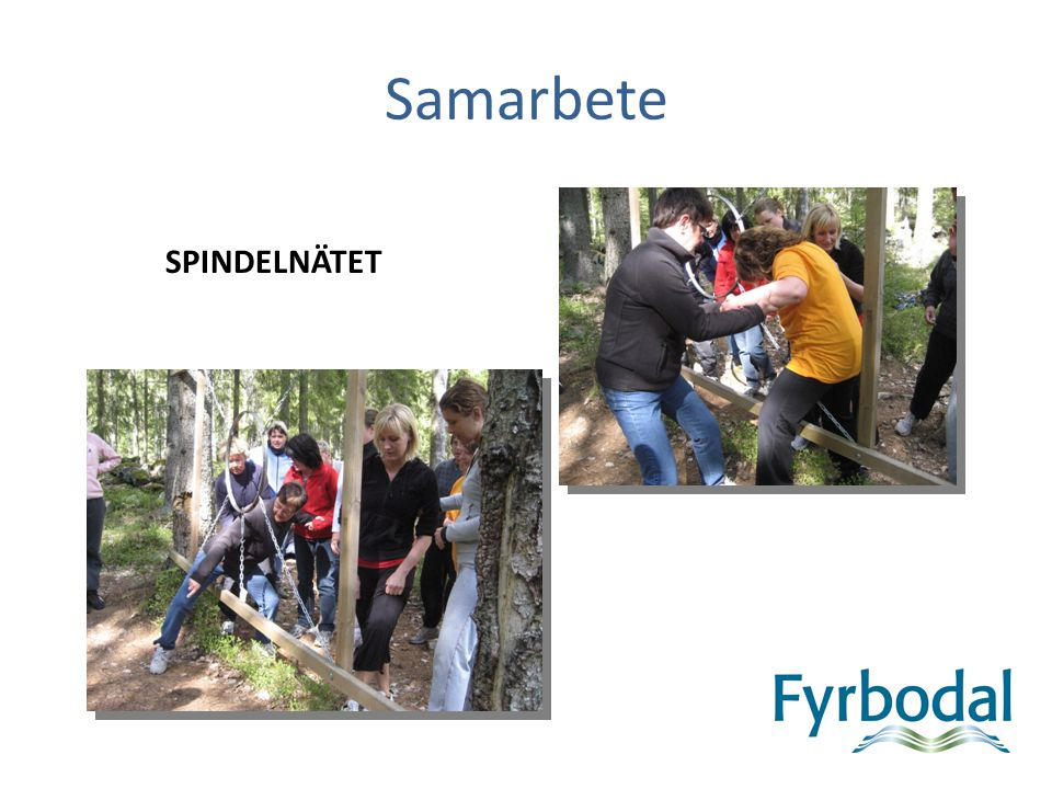 Samarbete SPINDELNÄTET