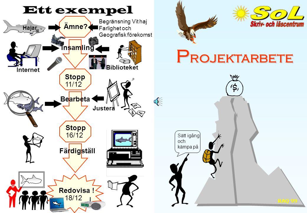 P rojektarbete Sätt igång och kämpa på Ett exempel Ämne.