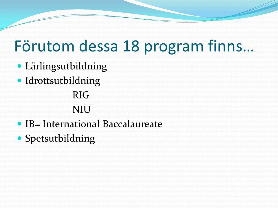 Förutom dessa 18 program finns… Lärlingsutbildning Idrottsutbildning RIG NIU IB= International Baccalaureate Spetsutbildning