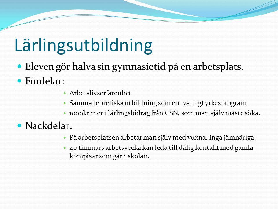 Lärlingsutbildning Eleven gör halva sin gymnasietid på en arbetsplats.