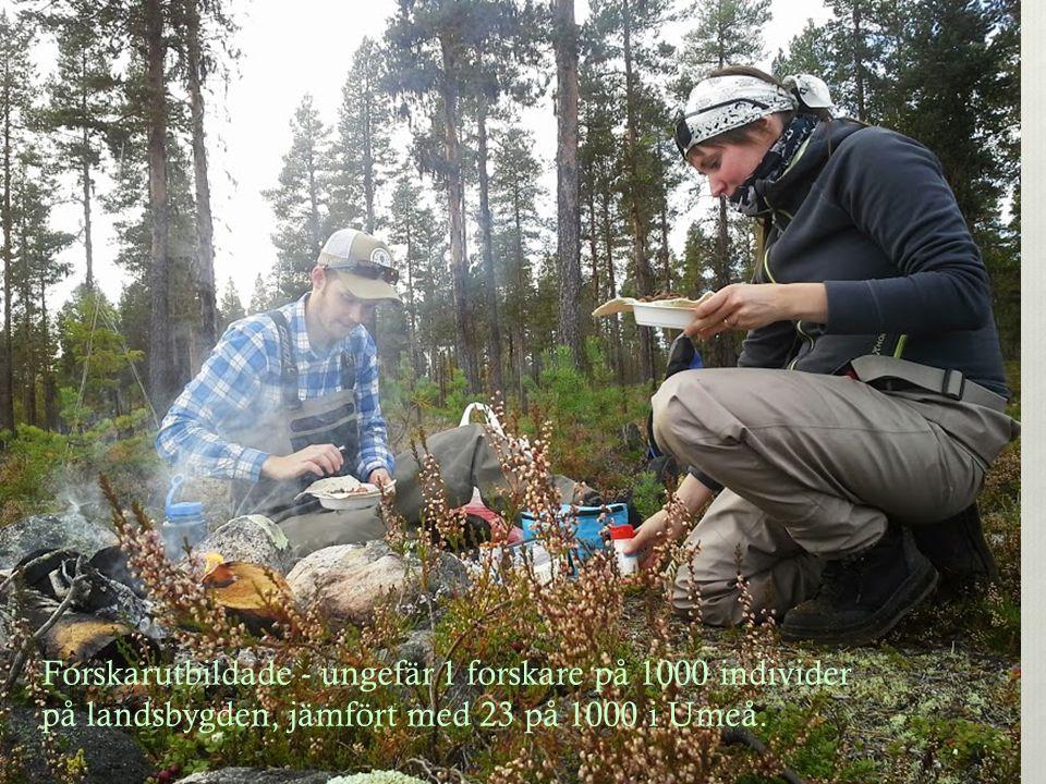 Forskarutbildade - ungefär 1 forskare på 1000 individer på landsbygden, jämfört med 23 på 1000 i Umeå.