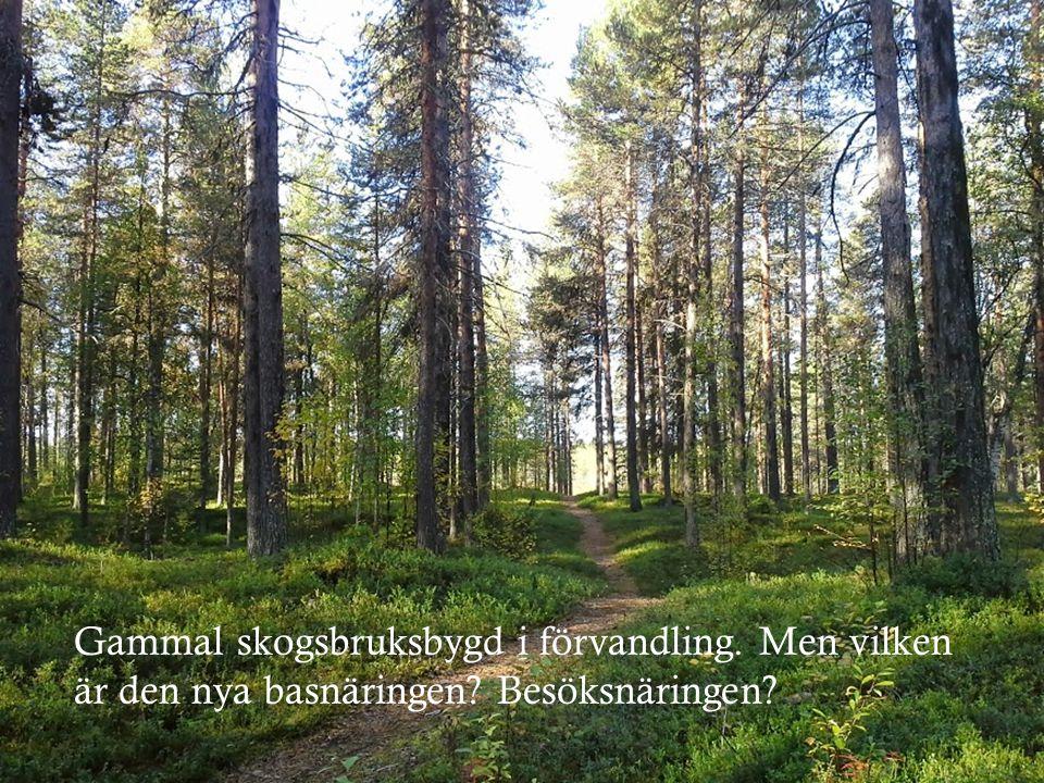 Gammal skogsbruksbygd i förvandling. Men vilken är den nya basnäringen? Besöksnäringen?