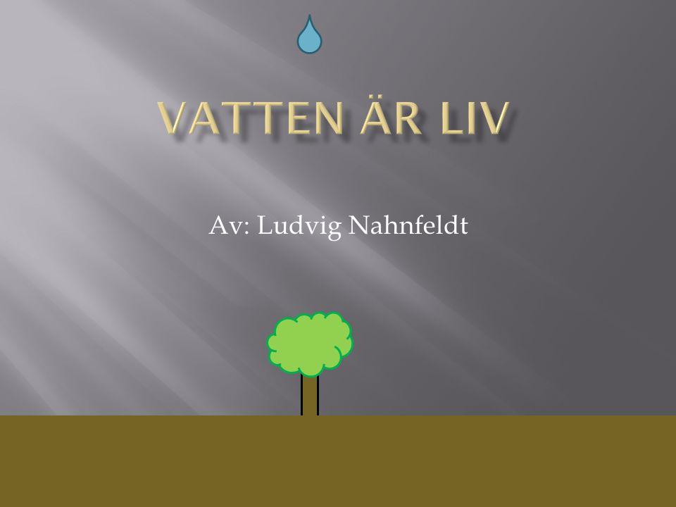 Av: Ludvig Nahnfeldt