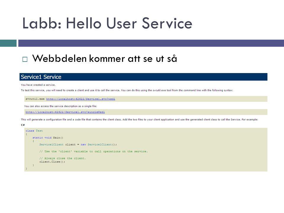 Labb: Hello User Service  Webbdelen kommer att se ut så