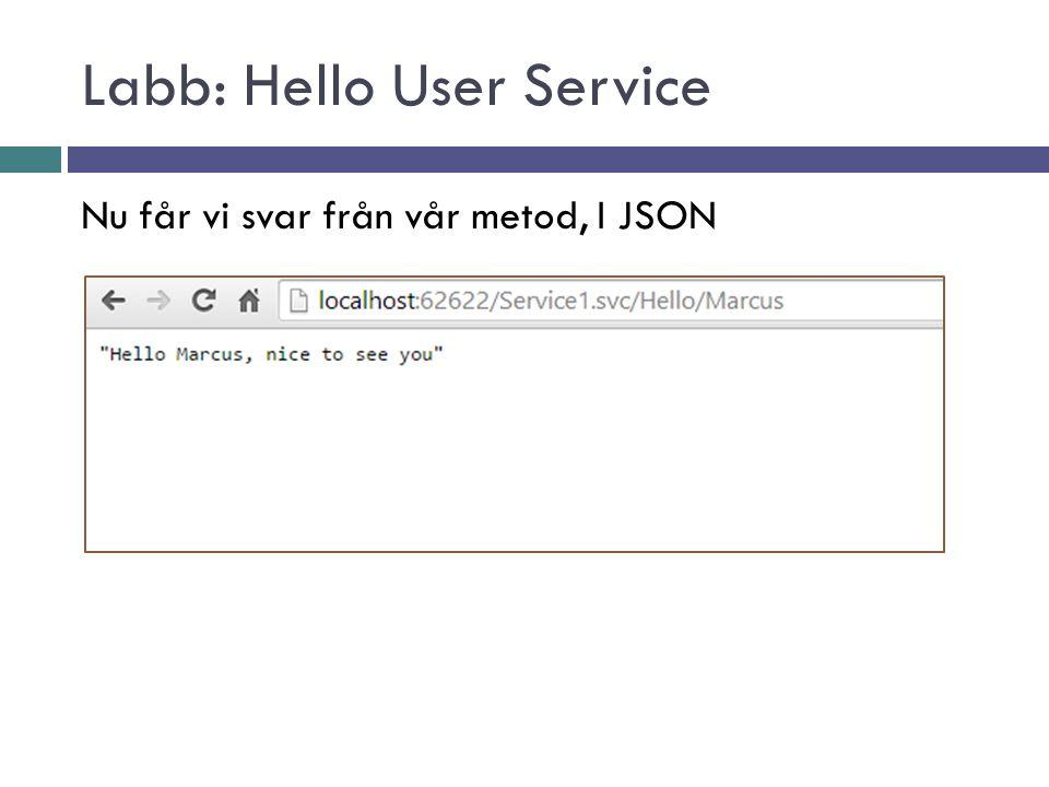 Nu får vi svar från vår metod, I JSON
