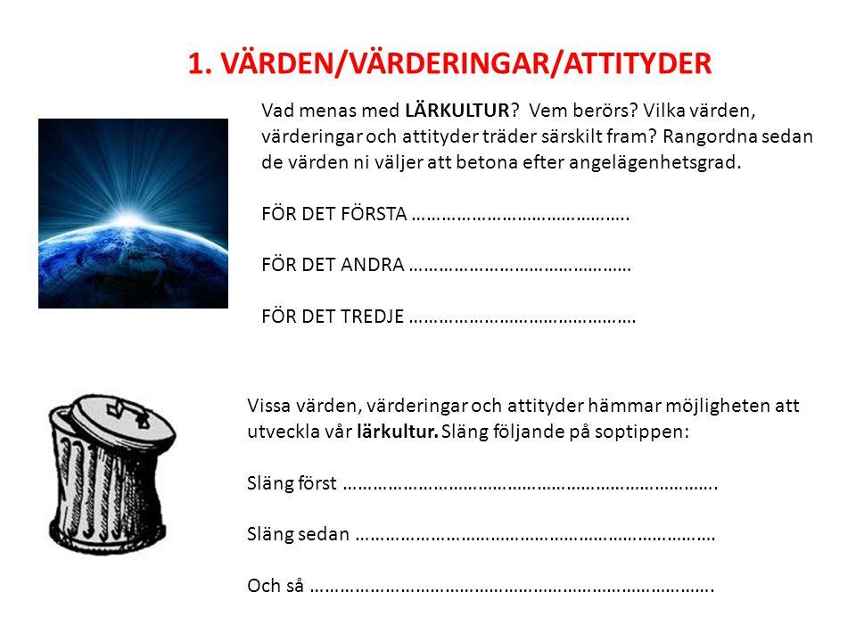 1. VÄRDEN/VÄRDERINGAR/ATTITYDER Vad menas med LÄRKULTUR.