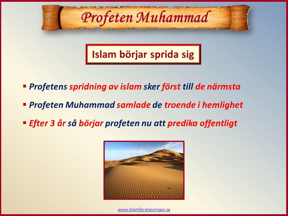 www.islamforelasningar.se Profeten Muhammad  Profeten och hans följeslagare blev först förnedrade  De farbröder till profeten som levde tog olika parti  Profeten fortsätter predika och framför vikten av fromhet Människor.