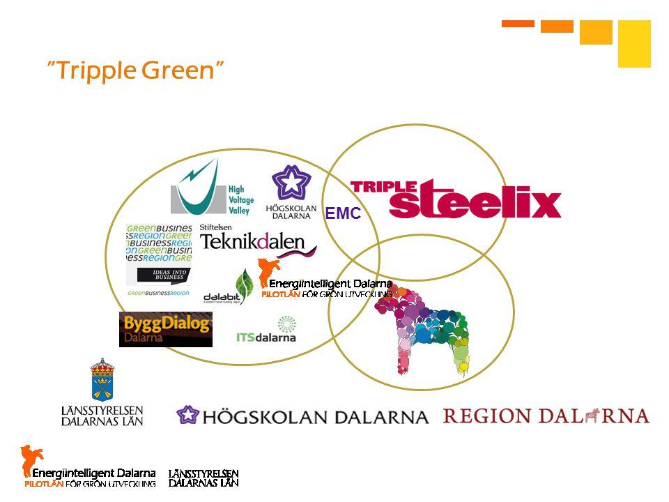 "EMC ""Tripple Green"""
