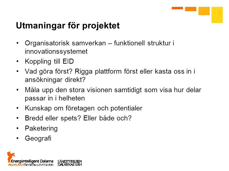 Utmaningar för projektet Organisatorisk samverkan – funktionell struktur i innovationssystemet Koppling till EID Vad göra först? Rigga plattform först