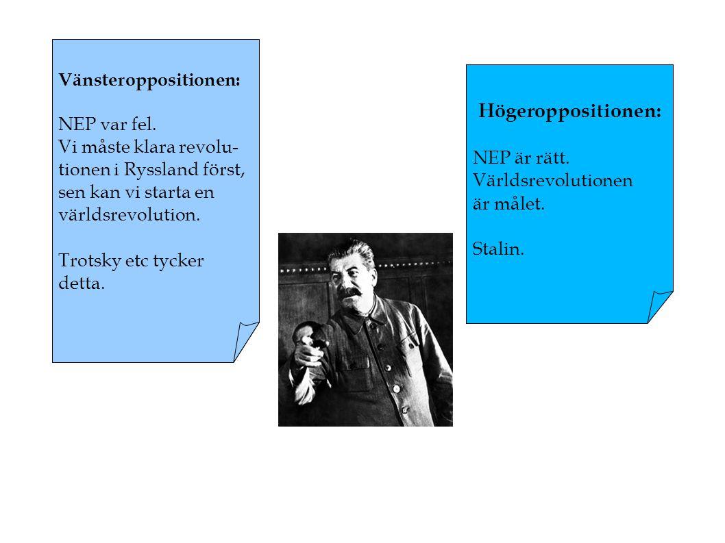 Stalins väg till makten: Först så spelar han ut vänsteroppositionen.