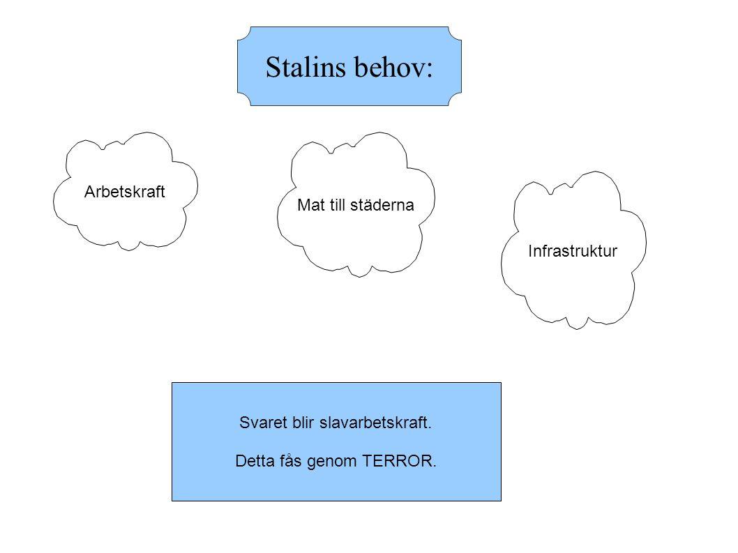 Stalins behov: Arbetskraft Mat till städerna Infrastruktur Svaret blir slavarbetskraft.