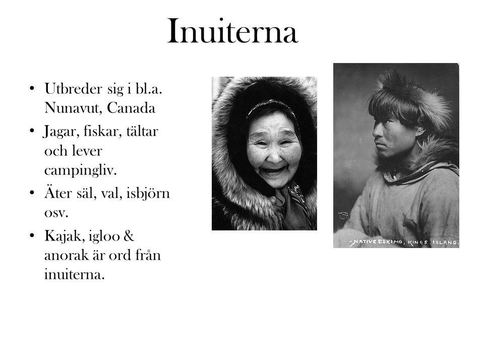 Inuiterna Utbreder sig i bl.a. Nunavut, Canada Jagar, fiskar, tältar och lever campingliv. Äter säl, val, isbjörn osv. Kajak, igloo & anorak är ord fr