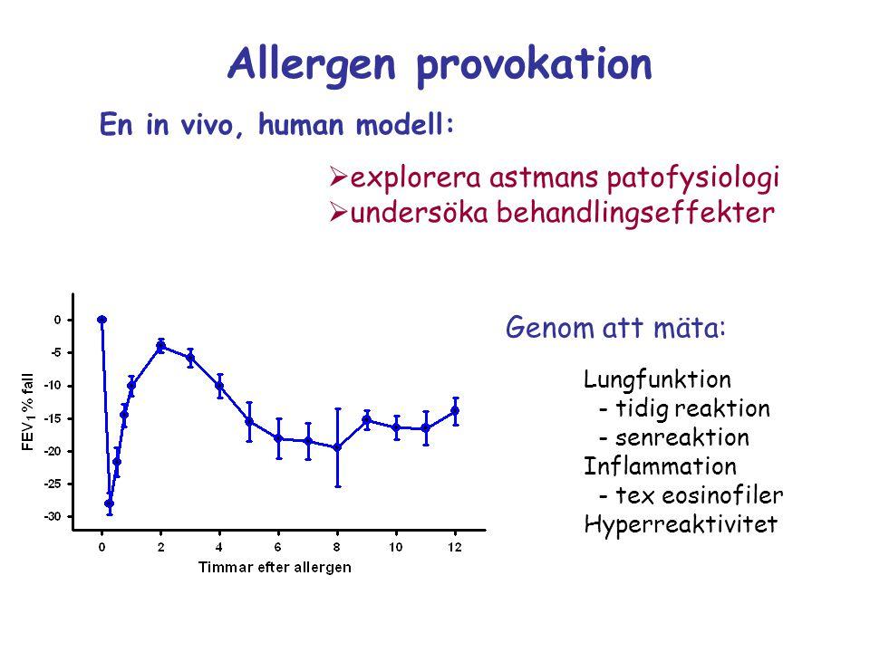 Allergen provokation  explorera astmans patofysiologi  undersöka behandlingseffekter En in vivo, human modell: Genom att mäta: Lungfunktion - tidig