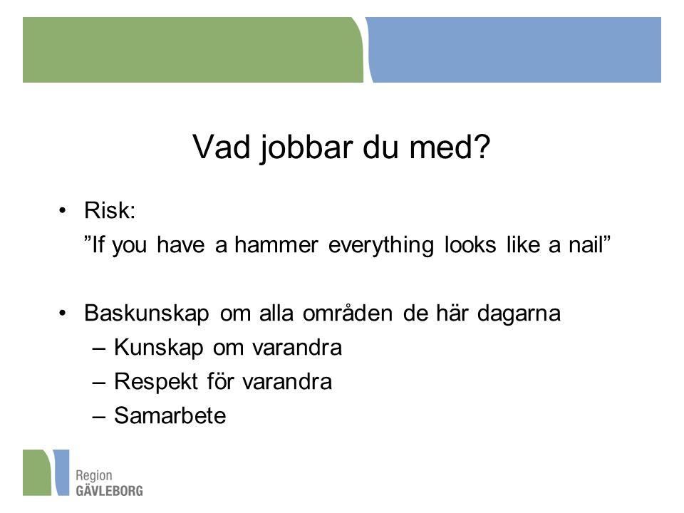 """Vad jobbar du med? Risk: """"If you have a hammer everything looks like a nail"""" Baskunskap om alla områden de här dagarna –Kunskap om varandra –Respekt f"""