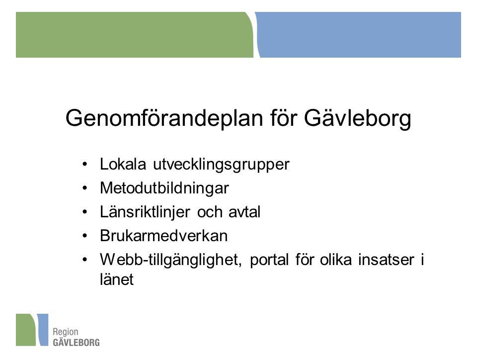 Genomförandeplan för Gävleborg Lokala utvecklingsgrupper Metodutbildningar Länsriktlinjer och avtal Brukarmedverkan Webb-tillgänglighet, portal för olika insatser i länet