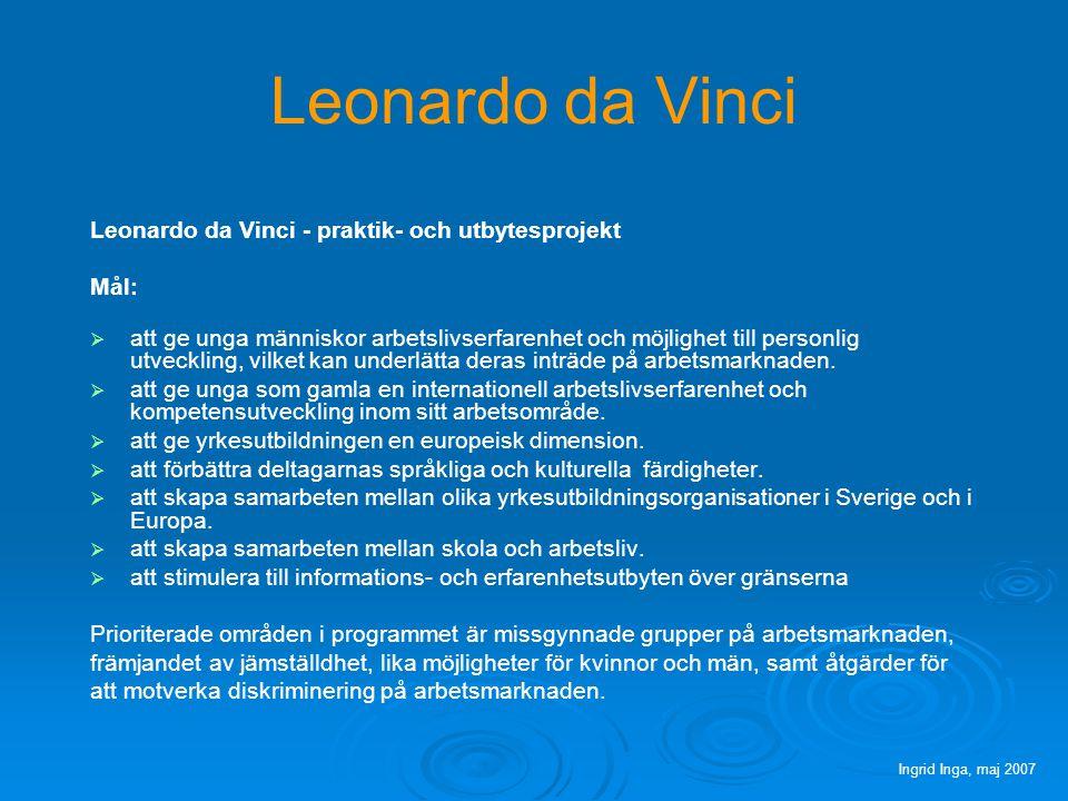 Leonardo da Vinci Leonardo da Vinci - utvecklingsprojekt Mål: förbättra och utöka samarbeten mellan aktörer inom utbildning, företag, arbetsmarknadens parter samt andra relevanta aktörer i Europa utveckla innovativa inslag i pedagogik och metodik i yrkesutbildningen samt vidare- utveckla överföringen av dessa mellan branscher och länder.